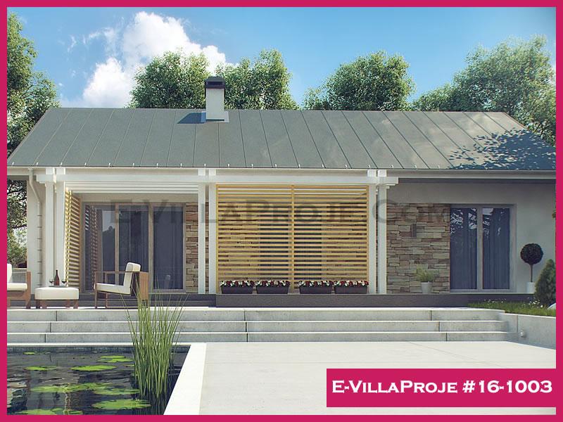 Ev Villa Proje #16-1003