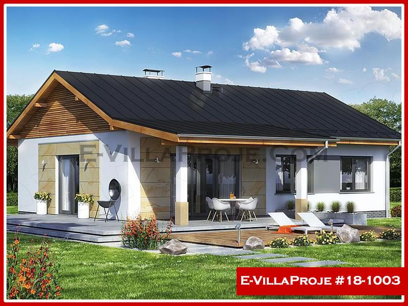 Ev Villa Proje #18 – 1003