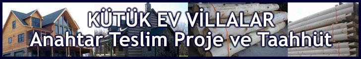 Kütük Ev Villa Proje