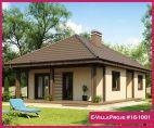 Ev Villa Proje #16-1001
